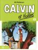 Calvin et Hobbes 13 : Enfin seuls ! (petit format)