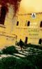 Daoud : La préface du nègre. Le Minotaure 504