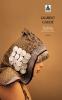 Gaudé : Salina. les trois exils