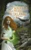Simard : Le souffle de la pierre d'Irlande Tome 1 : Le feu